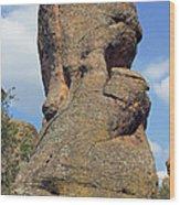 Rock Formation Belogradchik Wood Print