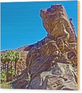 Rock Formation Higher Than Fan Palms Along Lower Palm Canyon Trail In Indian Canyons Near Palm Sprin Wood Print