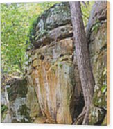 Rock Formation Wildcat Den State Park Wood Print