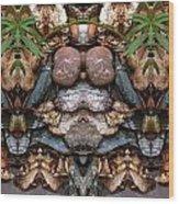 Rock Garden 0192-3 Wood Print