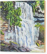 Rock Glen Falls Ontario Canada Wood Print