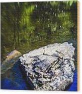 Rock In The Water Wood Print