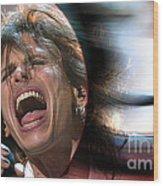Rock N Roll Steven Tyler Wood Print