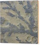 Rock Patterns On Mars Wood Print