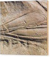 Rock Patterns Wood Print by Steven Ralser