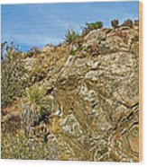 Rock Pile In Black Rock Canyon On Panorama Loop Trail In Joshua Tree National Park-california Wood Print