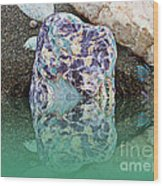 Rock Reflections - Water - Beach Wood Print