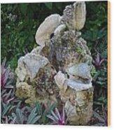 Rock Statue Wood Print