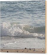 Rock-strewn Beach Wood Print