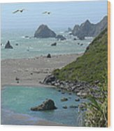 Rock West Coast Wood Print by Mike McGlothlen