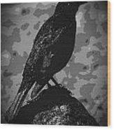 Rockbird Wood Print