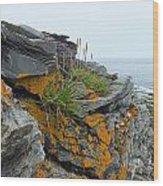 Rockbound Coast Wood Print