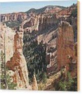 Rockformation At Bryce Canyon  Wood Print