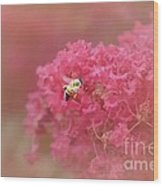 Rockin Pink Bee Wood Print