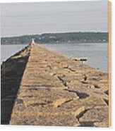 Rockland Breakwater Lighthouse Coast Of Maine Wood Print