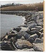 Rocks Along The Shore At Sandy Point Wood Print