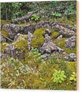 Rocks And Moss II Wood Print