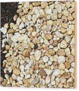 Rocks And Mulch Wood Print