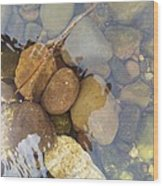 Rocks And Pebbles 2 Wood Print