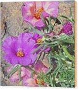 Rocks And Roses Wood Print