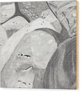 Rocks And Shoe  Wood Print