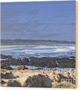 Rocks Before Beach Wood Print