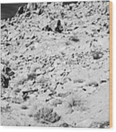 Rocks Forming Support For The Old Arrowhead Trail Road Valley Of Fire State Park Nevada Usa Wood Print