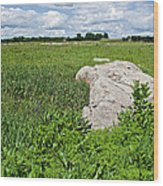 Rocks In A Tall Grass Prairie In Pipestone National Monument-minnesota Wood Print