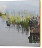 Rocks In Lake Wood Print