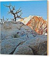 Rocks In Sun And Shade Along Barker Dam Trail In Joshua Tree Np-ca- Wood Print