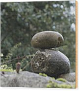 Rocks In The Garden Wood Print