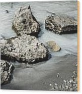Rocks In The River Wood Print