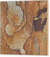 rocks 'IV Wood Print
