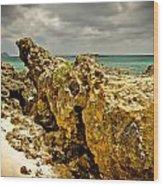 Rocks Of Elafonisi Island Wood Print