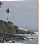 Rocks Of Kovalam Beach Kerala Wood Print