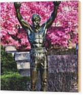 Rocky Among The Cherry Blossoms Wood Print