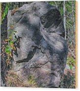 Rocky Ancestor Wood Print
