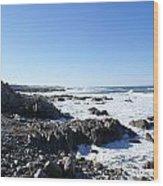 Rocky Beach Wood Print by Barbara Snyder