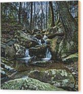 Rocky Branch Wood Print