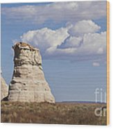 Rocky Buttes Protrude From The Middle Of Arizona Landscape Wood Print