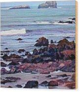 Rocky Coast Off San Simeon Wood Print