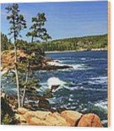 Rocky Coastline Wood Print
