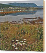 Rocky Harbour-nl Wood Print