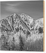 Rocky Mountain Autumn High In Black And White Wood Print
