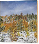 Rocky Mountain Autumn Storm Wood Print by James BO  Insogna