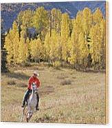 Rocky Mountain Cowboy Wood Print