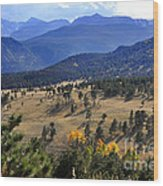 Rocky Mountain Evening Wood Print