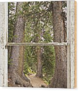 Rocky Mountain Forest Window View Wood Print
