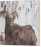 Rocky Mountain High Wood Print by Sharon Burger