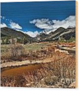 Rocky Mountain Meadows Wood Print